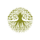 Abstrakcjonistyczny Round Drzewny logo Fotografia Royalty Free