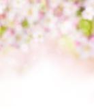 Abstrakcjonistyczny rozmyty wiosny tło royalty ilustracja