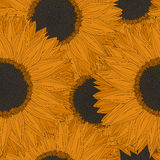 Abstrakcjonistyczny słonecznika wzór Fotografia Royalty Free