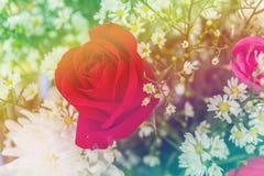 Abstrakcjonistyczny słodki fantazja kwiat z colourful filtrami Zdjęcia Stock