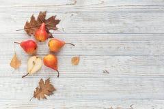 Abstrakcjonistyczny skład świeże dojrzałe owoc i liście na bielu Obrazy Stock