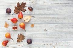 Abstrakcjonistyczny skład świeże dojrzałe owoc i liście na bielu Zdjęcie Royalty Free