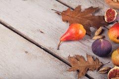 Abstrakcjonistyczny skład świeże dojrzałe owoc i liście na bielu Zdjęcia Royalty Free