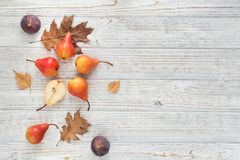 Abstrakcjonistyczny skład świeże dojrzałe owoc i liście na bielu Fotografia Royalty Free