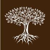 Abstrakcjonistyczny stylizowany drzewo z korzeniami i liśćmi naturalna ilustracja ilustracji