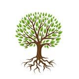 Abstrakcjonistyczny stylizowany drzewo z korzeniami i liśćmi naturalna ilustracja ilustracja wektor