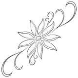 Abstrakcjonistyczny kwiat, kontury Zdjęcia Royalty Free