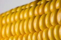 Abstrakcjonistyczny szczegół kukurudza Zdjęcia Royalty Free