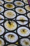 Abstrakcjonistyczny szkło obrazy royalty free