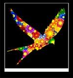 abstrakcjonistyczny sztandaru karty projektantów szablon Zdjęcie Stock