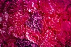 Abstrakcjonistyczny sztucznego kwiatu tło Zdjęcie Stock