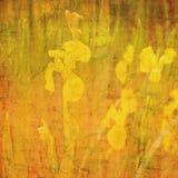 abstrakcjonistyczny tła daffodil motyw Zdjęcie Stock