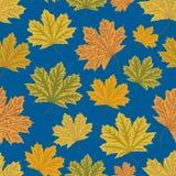 abstrakcjonistyczny tła liść klonu wzór bezszwowy jesienią zbliżenie kolor tła ivy pomarańczową czerwień liści royalty ilustracja