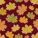 abstrakcjonistyczny tła liść klonu wzór bezszwowy jesienią zbliżenie kolor tła ivy pomarańczową czerwień liści ilustracja wektor