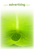 abstrakcjonistyczny tła zieleni liść Zdjęcie Royalty Free