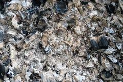 Abstrakcjonistyczny tło brzoza węgle palił w brązowniku fotografia royalty free