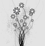 abstrakcjonistyczny tło kwitnie naturę Fotografia Stock