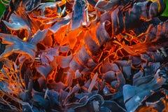 Abstrakcjonistyczny tło ogień, węgle, płomienie i pokrętni elementy popiół, Fotografia Stock