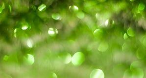 Abstrakcjonistyczny tło z Bożenarodzeniową świecidełko zielenią, Zdjęcia Stock
