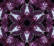 Abstrakcjonistyczny tło z geometrycznym kalejdoskopowym projektem uzyskującym od różnych odcieni wielka purpurowa kapusta przewod royalty ilustracja
