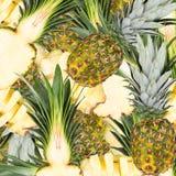 Abstrakcjonistyczny tło z plasterkami świeży ananas Zdjęcia Stock