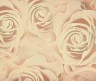 Abstrakcjonistyczny tło z różami Fotografia Royalty Free