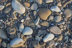 Abstrakcjonistyczny tło z suchy popielaty round duży i mały denny reeble Zdjęcie Stock