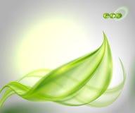 Abstrakcjonistyczny tło z zielonym liściem Fotografia Royalty Free