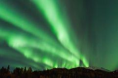 abstrakcjonistyczny tło zaświeca północnego wektor Fotografia Royalty Free