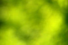 abstrakcjonistyczny tło zamazująca zieleń Zdjęcie Stock