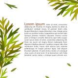 Abstrakcjonistyczny tło zieleni liść Obraz Stock