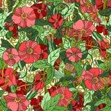 abstrakcjonistyczny tła kwiatu wzór bezszwowy Obrazy Stock
