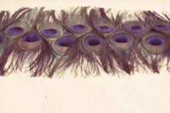 Abstrakcjonistyczny tło jaskrawi pawi piórka Zdjęcie Royalty Free