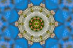 abstrakcjonistyczny tło kwiecisty wzór kalejdoskop Zdjęcia Stock