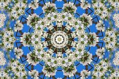 abstrakcjonistyczny tło kwiecisty wzór kalejdoskop Zdjęcia Royalty Free