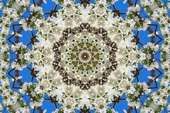 abstrakcjonistyczny tło kwiecisty wzór kalejdoskop Obrazy Royalty Free