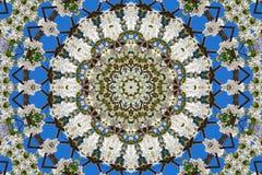 abstrakcjonistyczny tło kwiecisty wzór kalejdoskop Zdjęcie Royalty Free