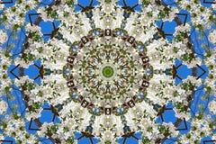 abstrakcjonistyczny tło kwiecisty wzór kalejdoskop Obrazy Stock