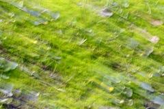 Abstrakcjonistyczny tło natura fotografia stock
