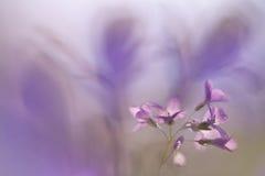 Abstrakcjonistyczny tło w purpurowych brzmieniach Zdjęcie Royalty Free