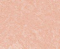 Abstrakcjonistyczny tekstury tło, pomarańczowy koloru brzmienie Zdjęcia Stock