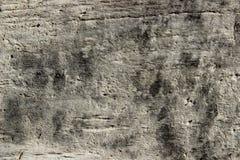 Abstrakcjonistyczny tekstury t?o, szaro?? kolory t?o pomalowane abstrakcyjne szaro?? texture drewnianego zdjęcie royalty free