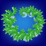Abstrakcjonistyczny wektorowy fractal tupocze w christmass pędnych Zdjęcia Stock
