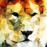 Abstrakcjonistyczny wektorowy rysunek lwa głowa Zdjęcia Stock