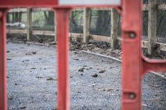 Abstrakcjonistyczny widok a wkrótce być uzupełniającym asfaltu cyklu ścieżką widzieć w UK obraz stock