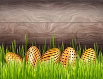 Abstrakcjonistyczny Wielkanocny drewniany tło z dno granicą dekorujący złoci jajka chujący w świeżej trawie royalty ilustracja
