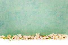 Abstrakcjonistyczny wiosny granicy tło z okwitnięciem Zdjęcia Stock