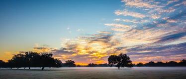 Abstrakcjonistyczny wschodu słońca krajobraz na gospodarstwie rolnym w Florida Obraz Stock