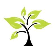 abstrakcjonistyczny zielony drzewo Obraz Stock