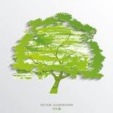 abstrakcjonistyczny zielony drzewo Zdjęcia Royalty Free